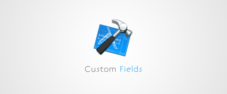 Advanced Custom Fields for WordPress Download Manager