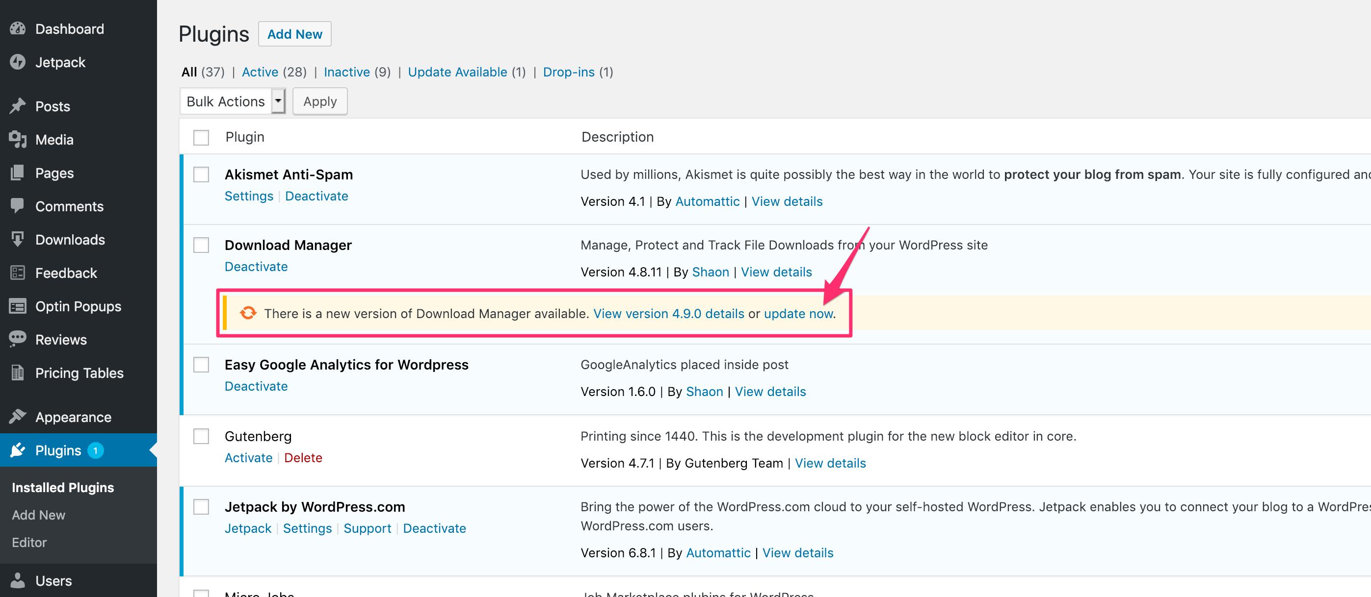 Updating WordPress Download Manager